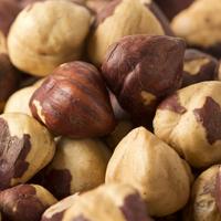 Hazelnuts / Filberts